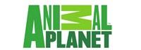 Animal Planet Website